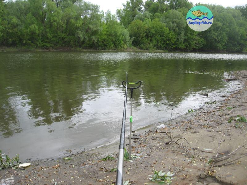 Ловля леща весной на фидер на реке + видео