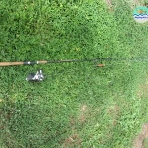 Учимся как правильно ловить щуку на спиннинг